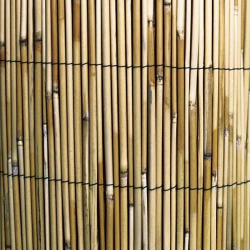 Caña de bambú natural - Varias medidas