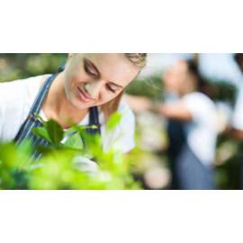 Jardinería y agricultura